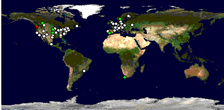World map showing the most visitors to this blog