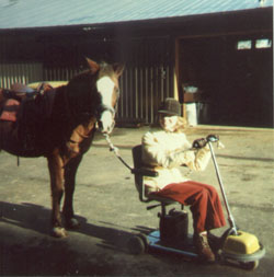 Glenda, in her electric scooter, leading the horse Sparkles