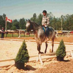 Glenda riding in an equestrian class