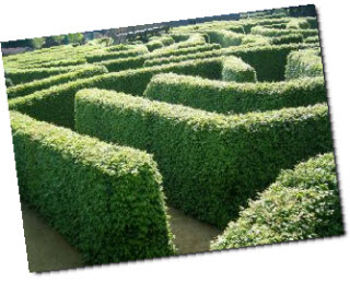 Garden maze in the Netherlands