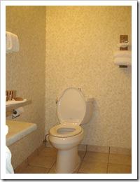 Toilet with no grab bar