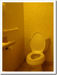 A toilet with a grab bar mounted on the wall