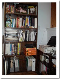 Glenda's partly organized bookcase and area