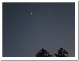 Clear night sky with thin sliver of moon