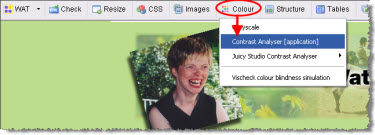 Web Accessibility Toolbar with the colour contrast analyzer application