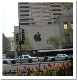 The Apple Store in Chicago