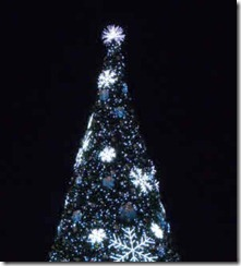 Surrey's Christmas tree
