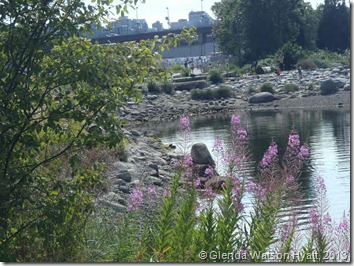 Purple flowers in the foreground, bridge in the background