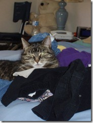 Faith on a pile of clothes on the bed